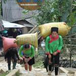 Lao Chaï