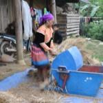 Bac Ha - Hmongs Bariolés