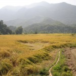 Muang Ngoi Neua - Village Ban Na