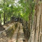 Alentour Angkor Vat - Beng Mealea